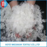 Small White Grey Goose and Duck Down Feather Wholesale