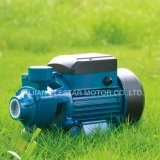 Qb Series 0.5HP Peripheral Clearn Water Pumps