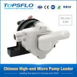 Solar DC Pump / Solar Water Pump/Mini Pump