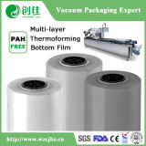 Multi Layer Co-Extruded Thermoforming Bottom Film