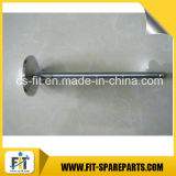 Dongfeng Shangchai Engine Spare Parts Intake Valve