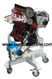 Educative Equipment 4 Stroke Gasoline Engine Cut Way Teaching Model