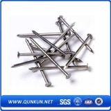 Brick Wall Common Concrete Iron Wire Nails