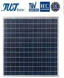 Green Product 135W Poly Solar Module with A Grade Quality