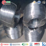 316L 0.015mm Hot Rolled Stainless Steel Wire