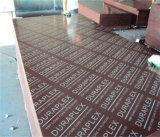 Shuttering Plywood/Panel/Formwork Laminated Plywood