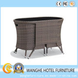Elegant Rattan Hotel Furniture Chairs Set in Outdoor