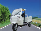 Plastic Front Cabin Tricycle/Cargo Tricycle/Trike (TR-5)
