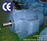 40HP/30kw Cast Iron Electrical Motor (IE2 efficiency, 3000rpm)