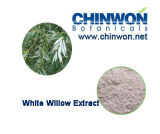 Factory Direct Supply White Willow Extract 98%
