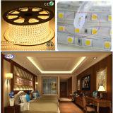 5050 60 SMD RGB LED Strip Christmas 100m/Reel Wholesale High Voltage 110V 220V 5050 LED Strip