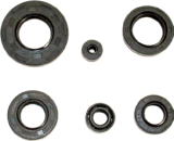Motorcycle Parts Motorcycle Oil Ring Ax100