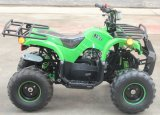 110cc Dune Buggy, Gas Powered Vehicles for Kids