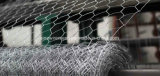 Sailin Hexagonal Wire Netting for Poultry Fence