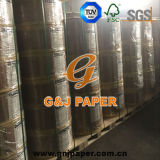 Competitive Price Thermal Paper in Large Roll Wholesale