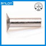DIN302 Steel Countersunk Head Rivet