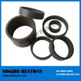 Black Epoxy Coated Neodymium Magnets