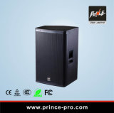 10 Inch Studio Monitor Audio PRO Stage Monitor Speakers