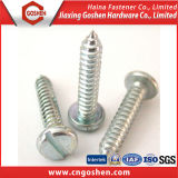 DIN7971 Slotted Pan Head Self Tapping Screw