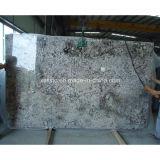 Bianco Antico Stone Tile Granite Slab for Flooring