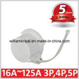 2p+E/ 3p+E 32A Industrial Plug Cap