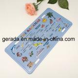 Decorative Souvenir License Plate