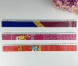 Cartoon Design 30cm Straight Ruler
