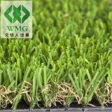 Classic Landscape Turf Grass for Garden