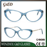 Latest New Design Acetate Spectacle Frame Eyewear Eyeglass Optical Rg77012