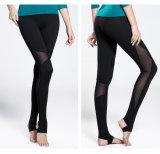 High Elastane Women Yoga Pant Women Legging Gym Wear Manufacturer