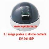 1.3 Mega Pixles IP Camera (EV-3011DP)