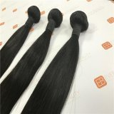 Virgin Remy Hair Bundles with Indian Hair