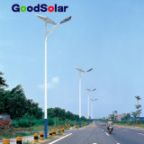 China Hot Sale LED Solar Lighting in Solar Street Light