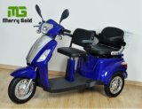 Three Wheel Two Seats 500W Electric Tricycle for Disabled