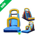 Giant Inflatable Water Slide for Sale (IS021805)