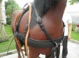 Lemico Made Horse Harness for 1horse