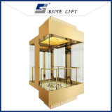 Panoramic Lift Residential Elevator with Good Quality