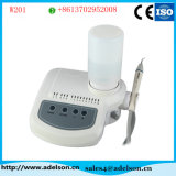 LED Handpiece Dental Ultrasonic Scaler with Ultrasonic Scaler Tips