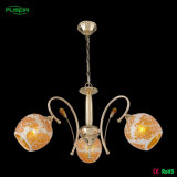 Ceiling Down Light Decoration Chandelier Lamp