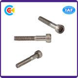 Carbon Steel 4.8/8.8/10.9 Galvanized Inner Hexagon Socket Screw Machinery/Industry Fasteners