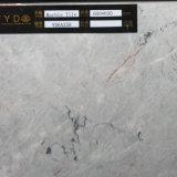 2017 Hot Sales Fully Glazed Tile (YD6A258)