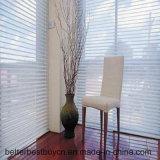 Hot Sale High Quality Aluminum Alloy Shutter/Blind Curtain