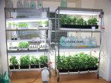 Chrome Adjustable Heavy Duty Greenhouse Storage Wire Shelf Rack