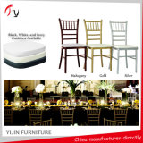 High Class Coloured Chiavari Chair - Manufacturer Main Product (AT-24)