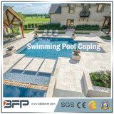 Honed Granite Swimming Pool Cooping/Fountain/Pool Surrounding for Exterior