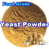 Feed Yeast Powder for Animal with Lowest Price