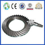 High-End Truck Bevel Gear by Lapping (ratio: 9/39; 9/41; 8/41)