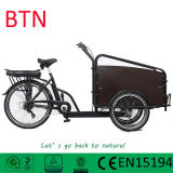 Holland 250W Pedal Assisted Two Wheel Cargo Ebike