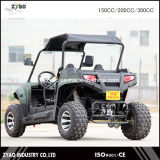 Electric Powered Vehicle, Electric UTV, Go Kart, Electric Buggy with Lithium Battery