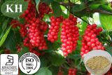 High Purity Schizandra Berry Extract 2%~9% Schisandrins by HPLC